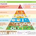 Food Pyramid Simple Version