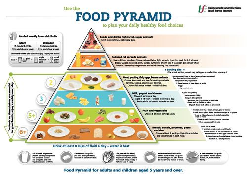 Publication cover - FoodPyramid